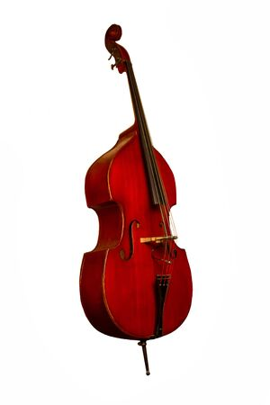 wooden double bass on white background with stand and strings