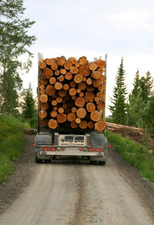 Timber transportation photo