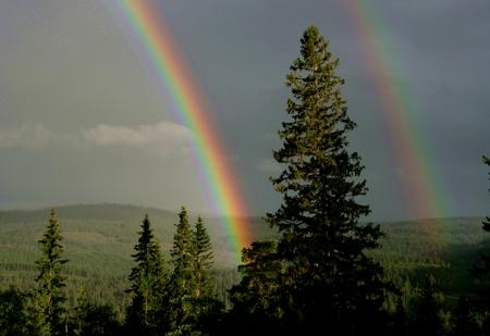 autumn colour: Two rainbows