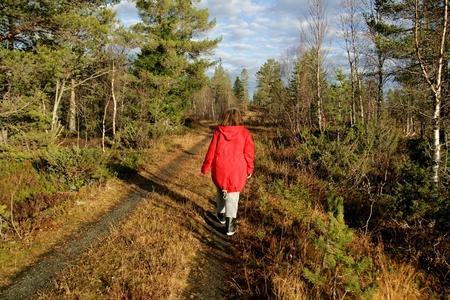 persona caminando: Mujer caminando en un bosque a finales del otoño