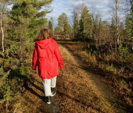 late fall: Woman walking in a forest in late fall