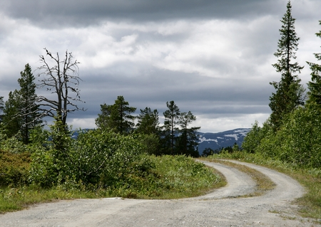 Dirt road through a Norwegian rural landscape Stock Photo