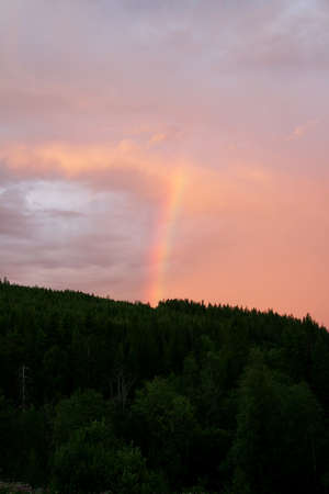 Rainbow column over a forest Stock Photo