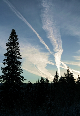Contrail tracks from plain traffic over a forest Stock Photo