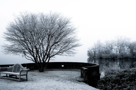 Frosty Lonely Seat over Lock Lommond Standard-Bild