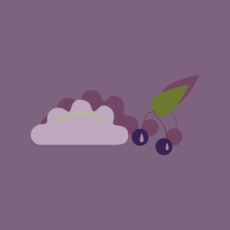 citrus family: Flat with shadow Icon dumplings cherries on bright background Illustration