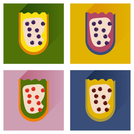 caviar: Vector set flat icons with long shadow sandwich with caviar Illustration
