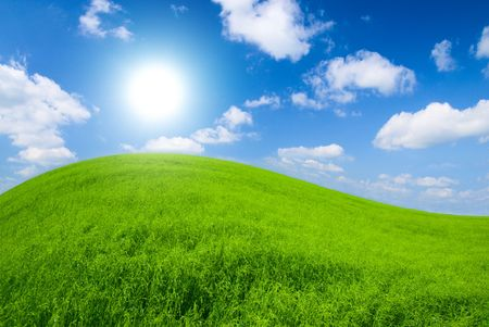 green meadow and sunny sky Stock Photo - 3402333