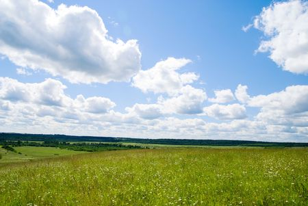 summer field of grass and s Stock Photo - 3446973