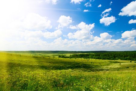 sunlight and green field at summer day Stock Photo - 3458130