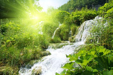 cascades: wateterfall nel profondo delle foreste