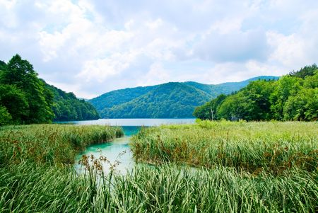 lake in deep forest Stock Photo - 3654333