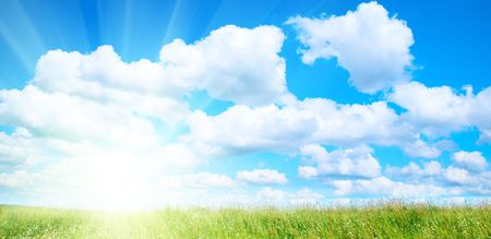 colorful cloudscape: field of grass and sunny summer day