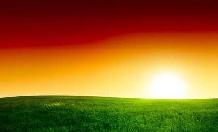 field of grass and sunset Stock Photo - 4030789