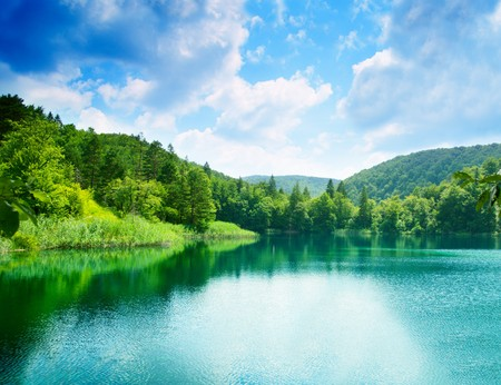 lake  pond  trees: green water lake in forest Stock Photo