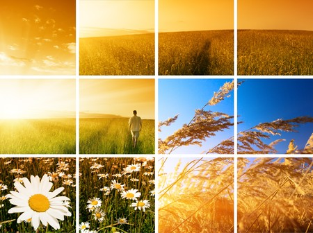 free background: collage of summer photos young man and sunset Stock Photo