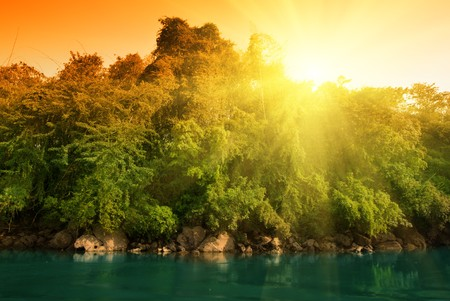 sunset in jungle of Thailand Stock Photo - 4548691