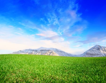 summer green field and mountains Stock Photo - 4736306