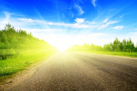 sulight: road and sunny summer day