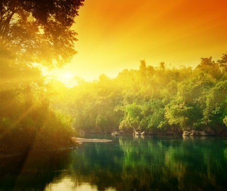 sunset in jungle of Thailand Stock Photo - 4827209