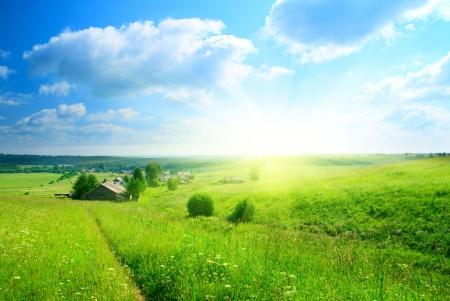 campi�a: perfecto d�a de verano en el pueblo ruso Foto de archivo