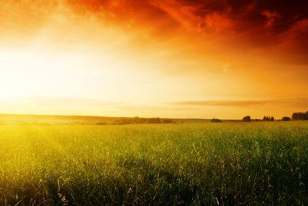 autmn: field of summer grass and sunset Stock Photo