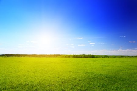 sunny spring day and green field Stock Photo - 5055553