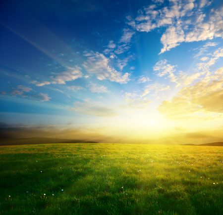 field of spring grass and sunset Stock Photo - 5097436