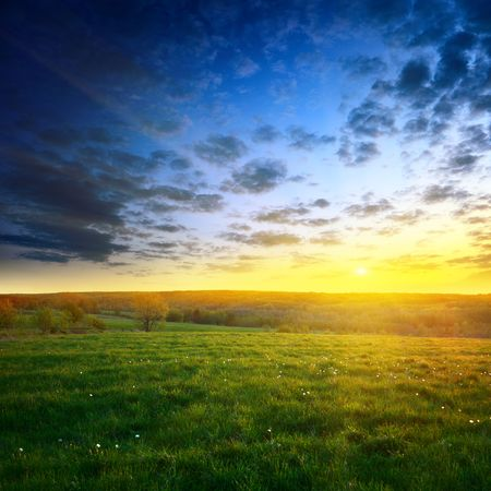 field of spring grass and sunset Stock Photo - 5097438