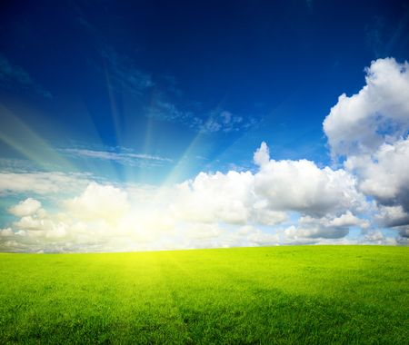sunny spring day and green field Stock Photo - 5097372