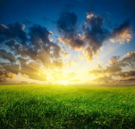 field of grass and sunset Stock Photo - 5097446