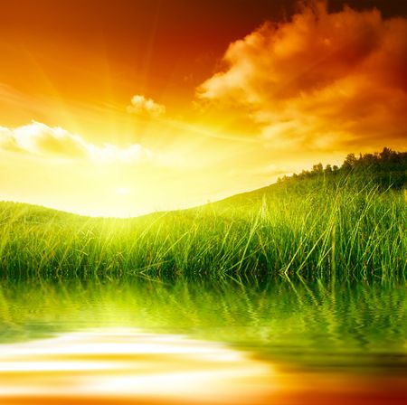 water grass and sunset Stock Photo - 5097365