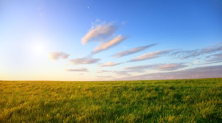 field of spring grass and sunset Stock Photo - 5132288