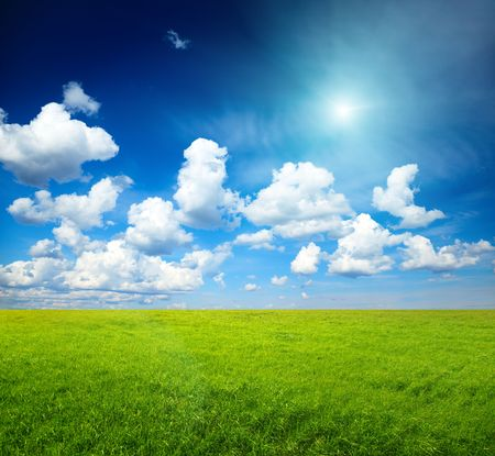 sunny spring day and green field Stock Photo - 5224639