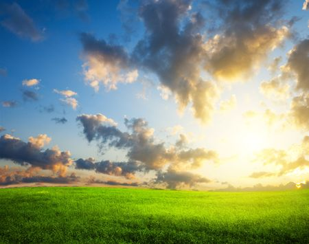 summer green field and sunset Stock Photo - 5257604
