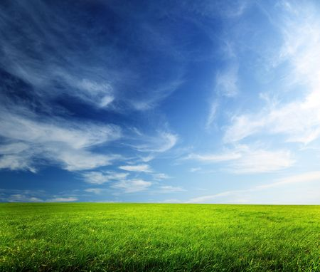field of spring grass and sunset Stock Photo - 5420050