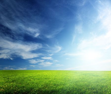 field of spring grass and sunset Stock Photo - 5523373