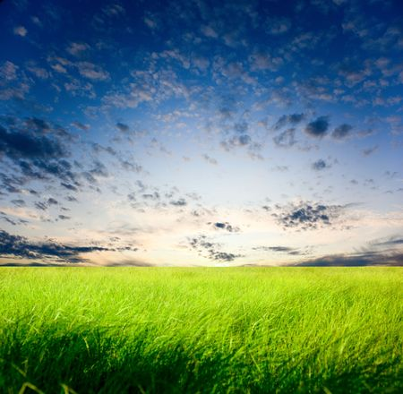 field of grass and sunset Stock Photo - 5523380