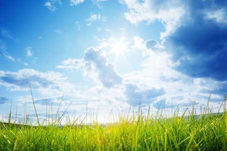 green grass and cloudy sky photo