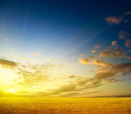 autmn: perfect autmn field and sunset Stock Photo