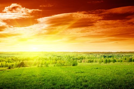 spring green field of grass and sunset Stock Photo - 5568937
