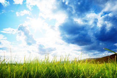 green grass and cloudy sky Stock Photo - 5568905
