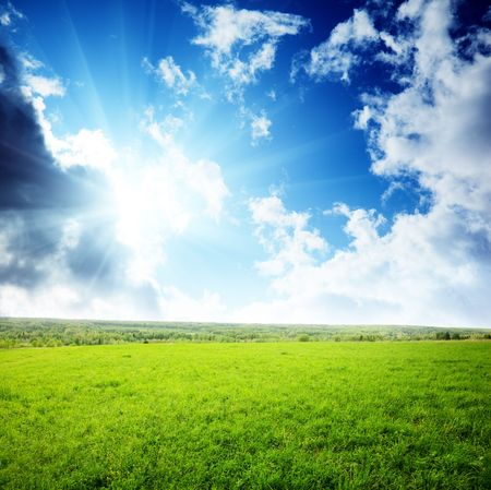 field of grass and sunset Stock Photo - 5600859