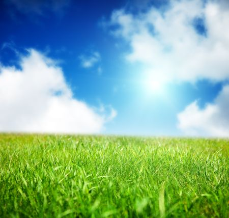 spring green field of grass Stock Photo - 5600906