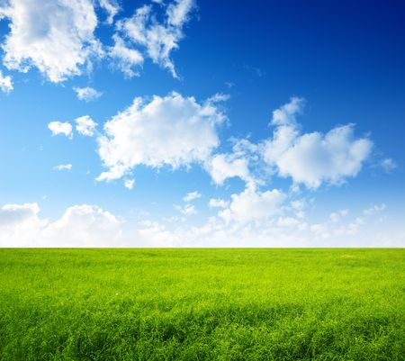 summer field of green grass and perfect blue sky Stock Photo - 5691562