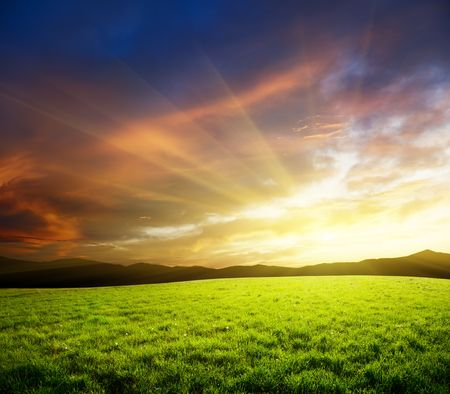 fresh morning: sunset and hjigh mountain field of grass