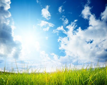 green grass and cloudy sky Stock Photo - 5711059