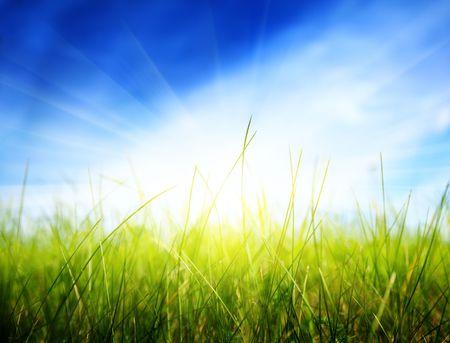 green grass under sun Stock Photo - 5711053