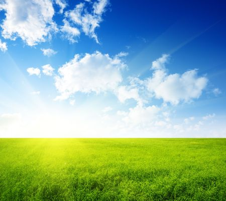 summer field of green grass and perfect blue sky Stock Photo - 5711011