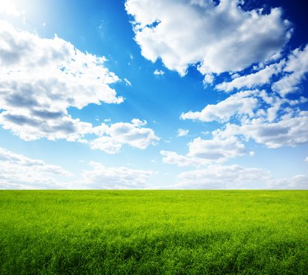 summer field of green grass and perfect blue sky Stock Photo - 5771307